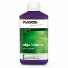 alga_bloom_500_300x300