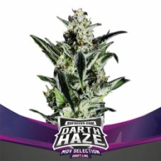 darth_haze